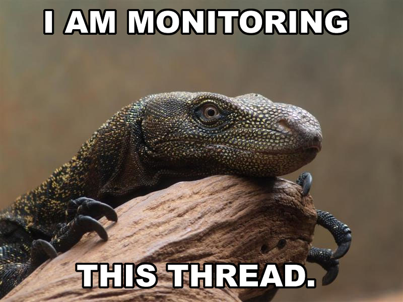 MonitorLizard