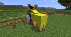 Smmbod kissing a sheep :D