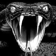 Triiky Viper